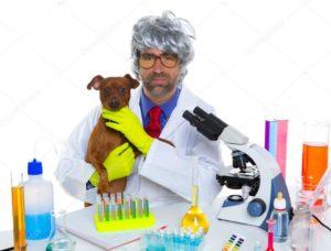 ветеринар лаборатория